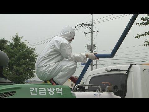 경북도·포항시, 메르스 대응에 총력