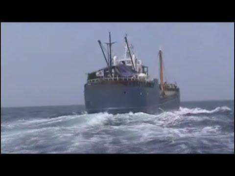 만취상태로 화물선 운항한 선장 검거