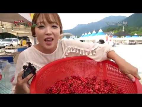 2016 문경 오미자·약돌한우 축제가 붉게 물들다! -3부