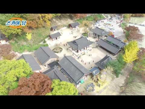 [영상] 하늘에서 본 '만산홍엽' 포항 운제산·오어사