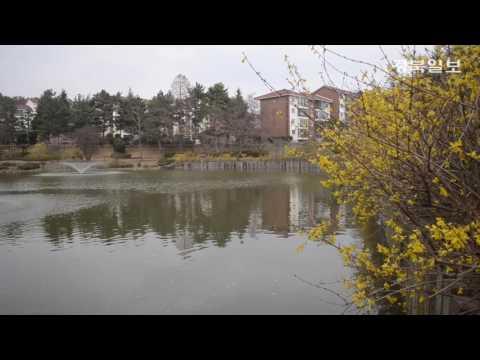 [액션캠 스케치] 벚꽃이 피기 전 찾은 영일대 호수공원