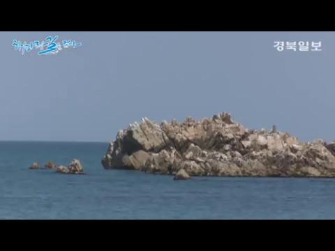 [해파랑길을 걷다]2. 봉길해변~나정해변 8.9km 구간