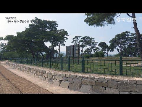 [대구·경북 문화유산답사기] 5. 경주 나정
