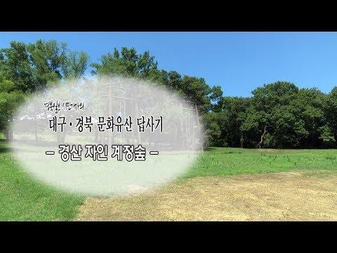 [대구·경북 문화유산답사기] 6. 경산 자인 계정숲