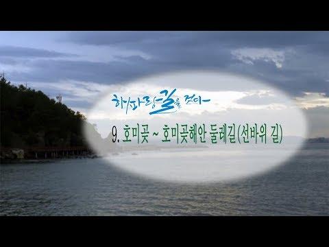[해파랑길을 걷다] 9. 호미곶~호미곶해안 둘레길(선바위길)