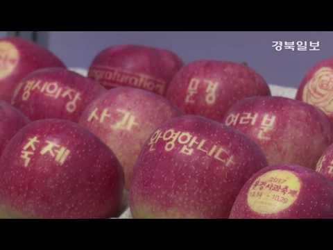 2017 문경사과축제 14~29일 열려