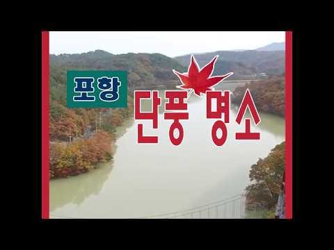 [영상]가을 가기전에 꼭 가봐야할 포항 단풍 명소