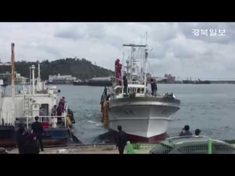 [영상] 북한 나포 391흥진호, 울진 후포항 입항
