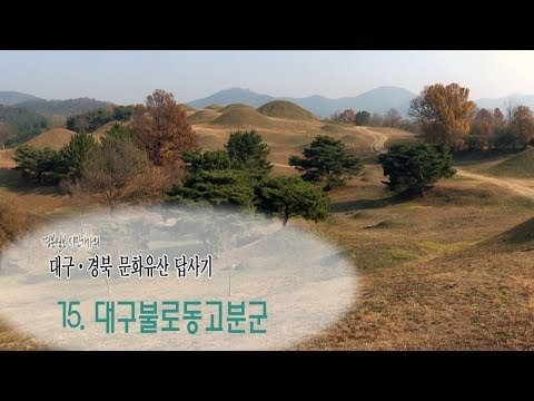[대구·경북 문화유산답사기]15.대구 불로동고분군