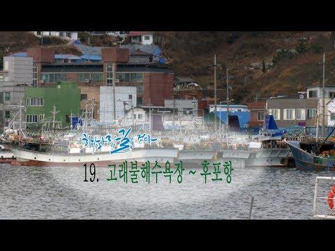 [해파랑길을 걷다]19.고래불해수욕장~후포항