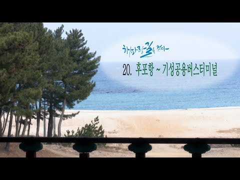 [해파랑길을 걷다] 20. 후포항~기성공용버스터미널