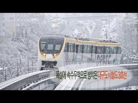 [영상]폭설에 속수무책으로 방치된 대구도시철도 3호선