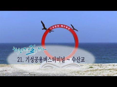[해파랑길을 걷다] 21. 기성버스터미널 ~수 산교