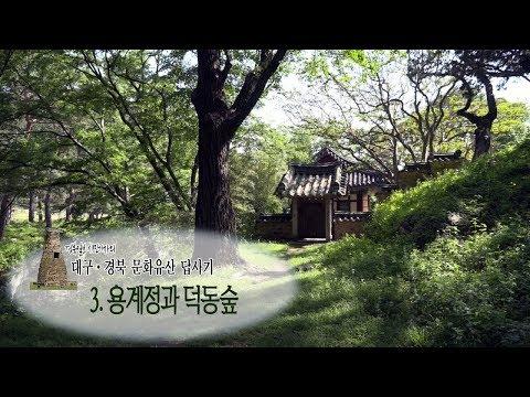 [대구·경북 문화유산 답사기2] 3. 포항 용계정과 덕동숲