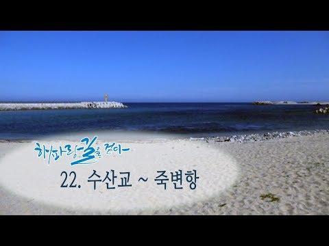 [해파랑길을 걷다] 22. 수산교~죽변항