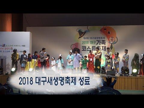 [영상]2018 대구 새생명축제 성료
