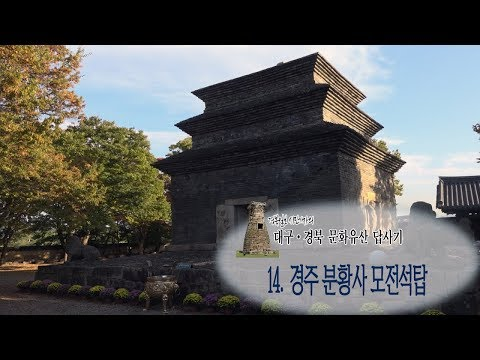 [대구·경북 문화유산답사기2]14.경주 분황사 모전탑