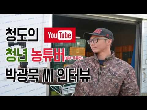 [인터뷰]인기 유튜버 청도 청년 농부 박광묵 씨 인터뷰