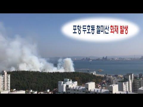 [속보] 포항 두호동 철미산 산불 발생